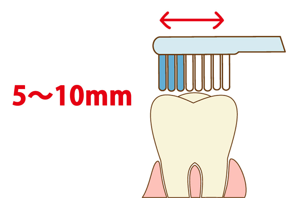 歯ブラシの動き